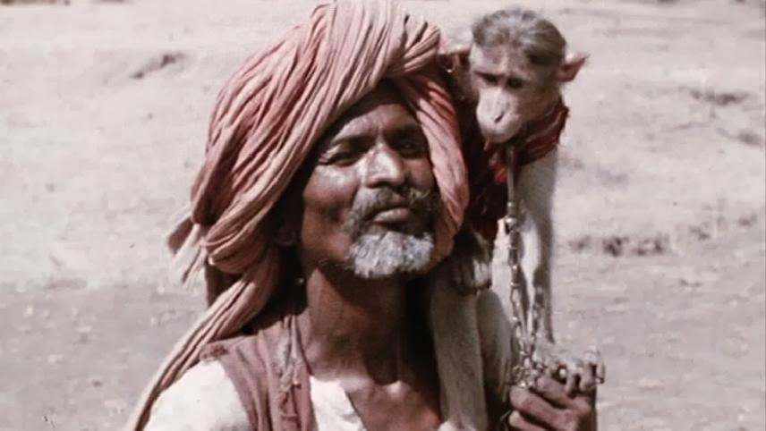 india-matri-bhumi